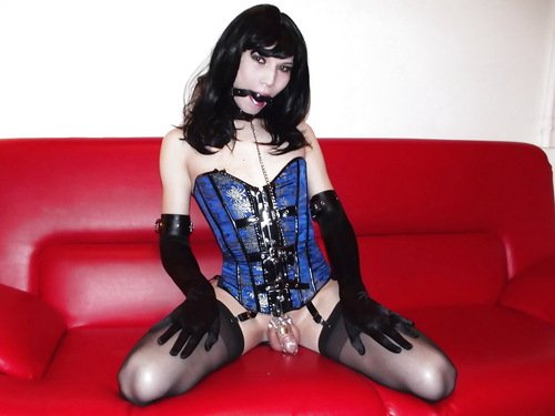 Sissy Chastity – Do You Have What it Takes?